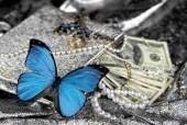 Laptop Skin Butterfly 082