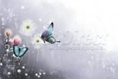 Laptop Skin Butterfly 030